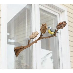 Un perchoir gourmand installer sur la vitre de vos fen tres for Mondiale fenetre