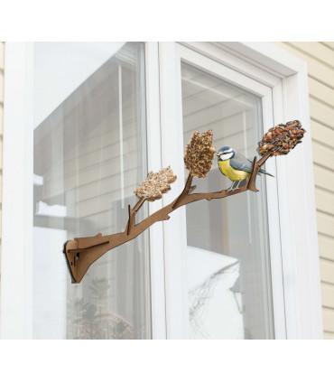 L'oiseau à ma fenêtre