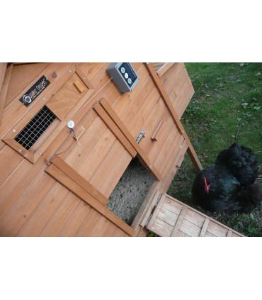 Digicot de ChickenGuard motorisation du poulailler bungalo