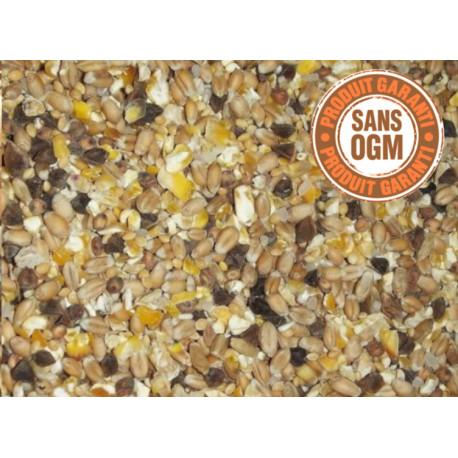 mélange de graines pour tourterelles sans ogm