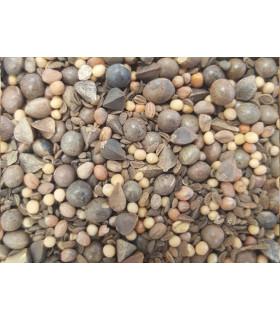 mélange de graines pour couverture végétale des enclos et parcsdes volailles