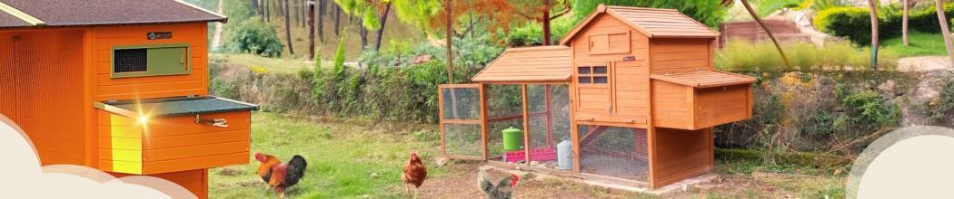 Grands poulaillers XL de  8 à 12 poules