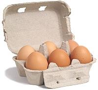 Oeufs de poule dans boîte de carton poulailler design