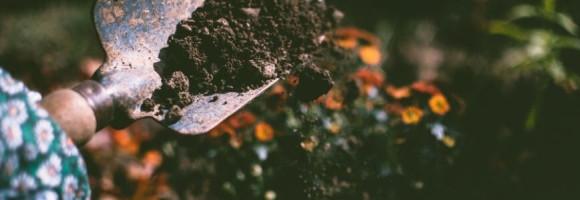 Le poulailler : Une fabrique d'engrais naturel et de qualité !