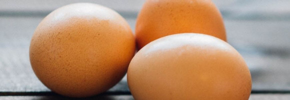 L'œuf nous bluffe !