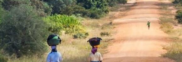 Des poulaillers pour l'autonomie des femmes Africaines