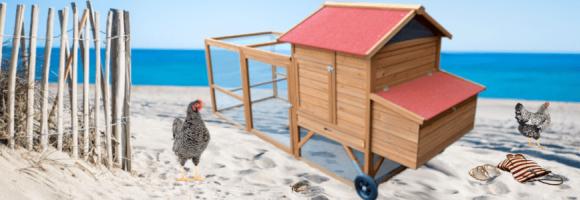 Zoom poulailler : La roulotte Bohèmie, nouveauté de l'été 2021 !